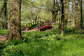 Houten brug in het bos Stock Foto
