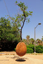 Hovering Orange Tree. Jaffa. Israel. Stock Images