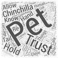 How To Get Your Chinchilla To Trust You word cloud concept word cloud concept background