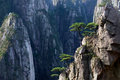 Huangshan mountain yellow mountain china of all the notable mountains in it is probably the most famous to be found in the Stock Images