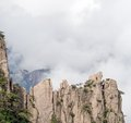Huangshan (yellow mountain) and pine tree on the top, Huang Shan, China. Royalty Free Stock Photo