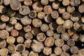 Huddle of wood Royalty Free Stock Photo