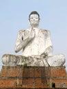 Huge buddha statue - hand in abhaya mudra Royalty Free Stock Photo
