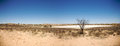 Huge dry pan in botswana facing the lodge Royalty Free Stock Photography
