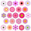 Huge selection of various concentric mandala flowers isolated on white colorful kaleidoscopic big collection in shape Stock Images