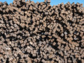Huge stack of railroad ties Royalty Free Stock Photo