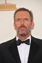 Hugh Laurie Royalty Free Stock Photo