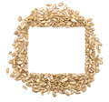 Hulled sunflower seeds Stock Photo