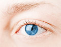 Human blue eye. Stock Photo