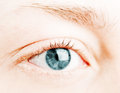 Human blue eye. Stock Photography