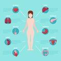 Human Body Anatomy Medical Sch...