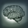 Human Brain - Digital Painting Stock Photo