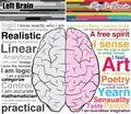 Hombre cerebro y derecho ¿qué usted son
