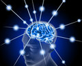 Human brain and pulses process of thinking Royalty Free Stock Image