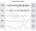 Human Brain Waves Diagram / Ch...