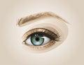 Eye Close up Royalty Free Stock Photo