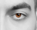 Human eye close up shot of beautiful male looking at camera Stock Image