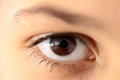 Human eye closeup Royalty Free Stock Photo