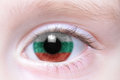 Human eye with national flag of bulgaria Royalty Free Stock Photo
