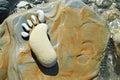 Human footprint in stone on seashore Stock Photos