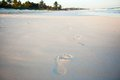 Human footprints on the white sandy beach see my other works in portfolio Royalty Free Stock Photo