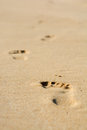 Human footsteps on atlantic fine beach sand Stock Image