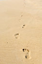 Human footsteps on atlantic fine beach sand Royalty Free Stock Images