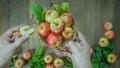 Human hand holding  apple Royalty Free Stock Photo