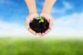 Human hand holding little tree with soil on blurred colorful grean grass Royalty Free Stock Photography