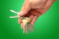 Human hand with keys on green Stock Photo