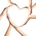 Human hands in heart shape isolated Royalty Free Stock Photo