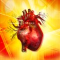 Human heart digital illustration of Royalty Free Stock Image