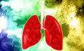 Human lungs digital illustration of in colour background Royalty Free Stock Photos