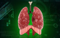 Human lungs digital illustration of in colour background Royalty Free Stock Image