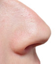 Human nose isolated on white Royalty Free Stock Image