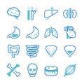 Human organ icons set