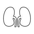 Human organ kidneys icon