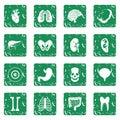 Human organs icons set grunge