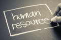 Human resource Royalty Free Stock Photo