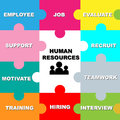 Human resources resource concept represented by a colorful puzzle design Stock Images