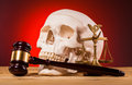Human scull scales of justice and gavel on wooden table Royalty Free Stock Image
