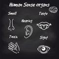 Human sense organs on chalkboard background