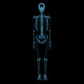 Human skeleton d xray blue transparent isolated on black background Royalty Free Stock Photography