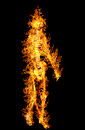 Human skeleton in flame on isolated on black background Stock Images