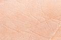 Human skin Royalty Free Stock Photo