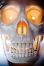 Human skull burning eyes closeup Stock Photo