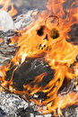 Human skull in fire flames appears meaning death by the accident Stock Photo
