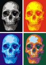 Human skull nice in four versions as background Royalty Free Stock Images