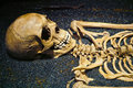 Human skull and skeleton bones detail shot of a the top of it s Royalty Free Stock Photography