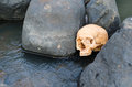 Human skull in streamlet Royalty Free Stock Photo